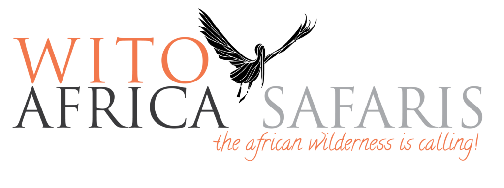 Bespoke Africa Safaris | Tailor-made Beach Vacations | Wito Africa Safaris