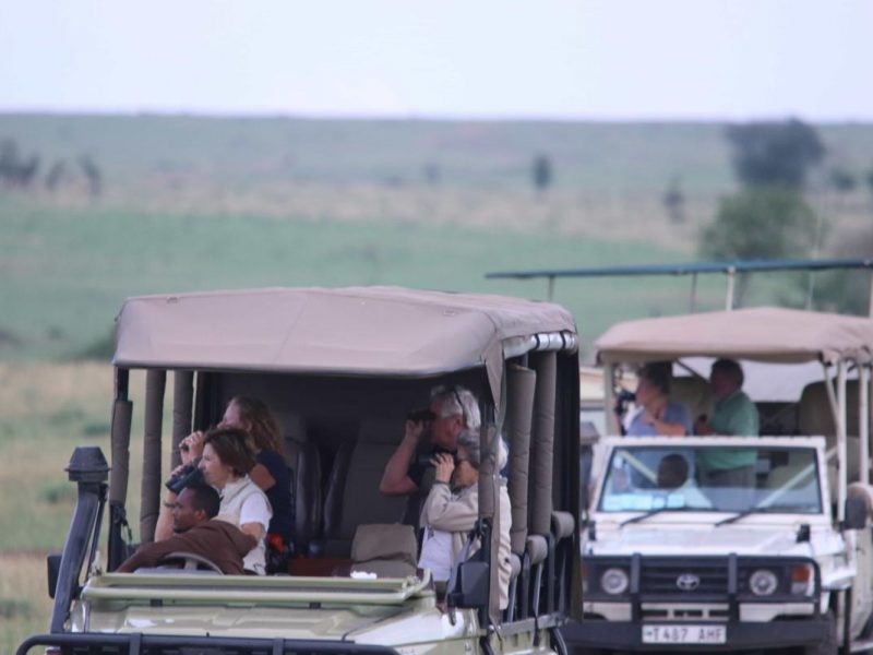 Serengeti Park Safari | Kenya Serengeti Safari | Wito Africa Safaris