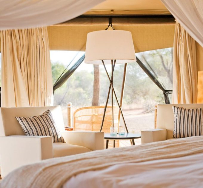 Sharing Our Love of the African Wilderness with YOU, One Unforgettable Safari at a Time!