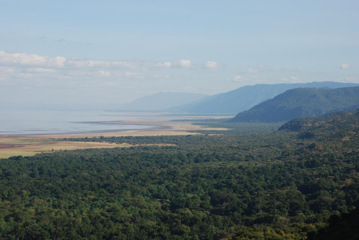 Lake-Manyara-National-Park-Rift-Valley-Wito-Africa-Safaris
